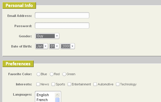 Portion of a nicely styled accessible form.